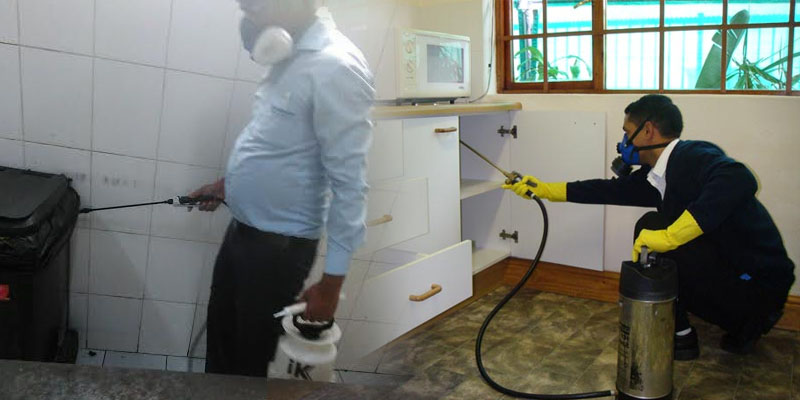 Serving Pest Control in Dubai